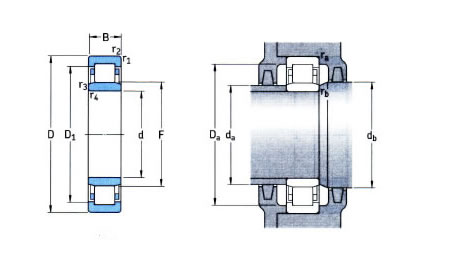 SKF NU Series Cylindrical Roller Bearing